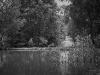 chesapeake_copyright_peter_weissboeck-17
